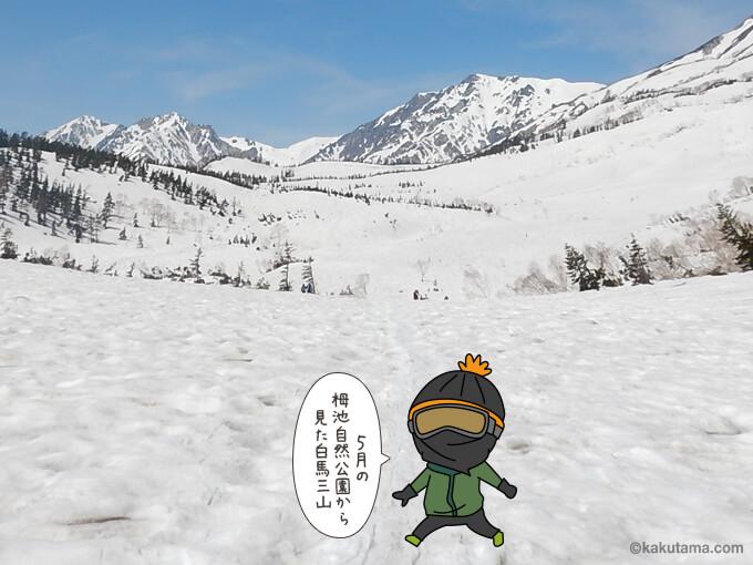 栂池自然園から見た白馬三山