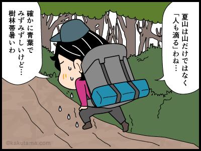 夏の樹林帯は暑い4コマ漫画
