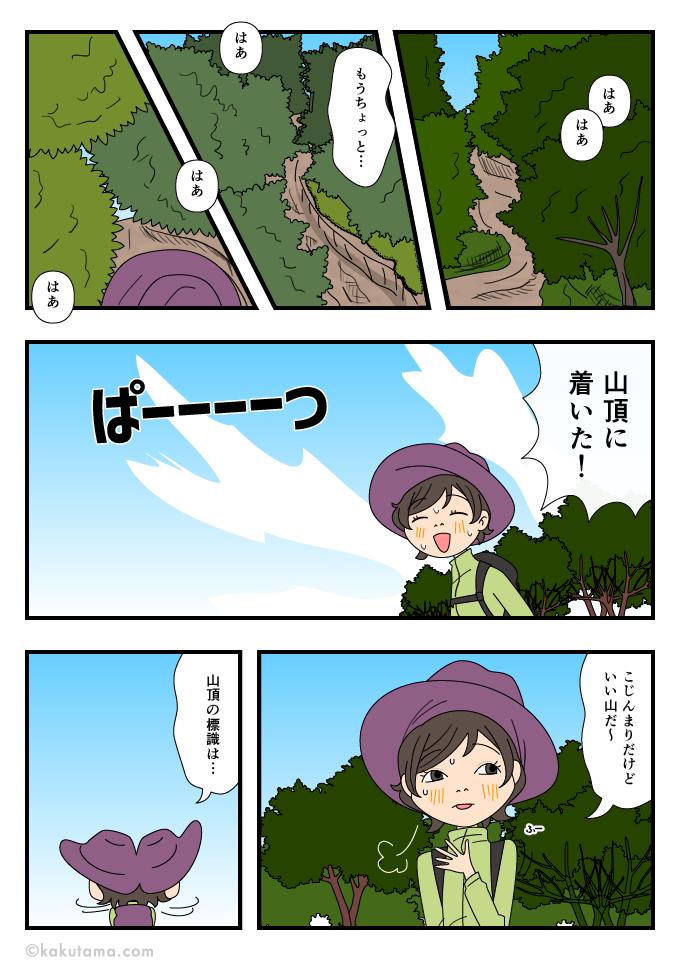 樹林帯を登り続けてやっと山頂に