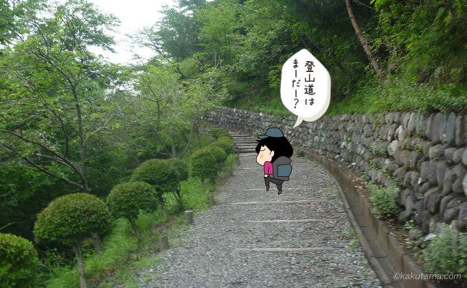 続く舗装された岩階段