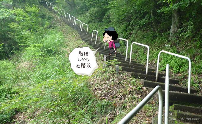 丸山公園から再び石階段を登る