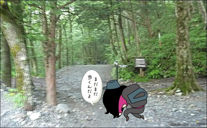 林道はたいてい長い
