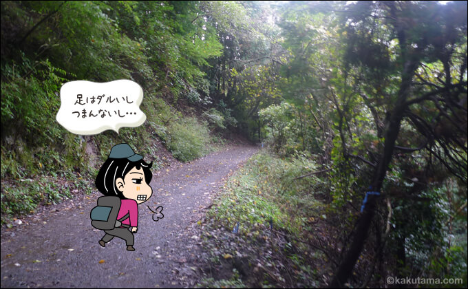 林道を歩くのが辛い