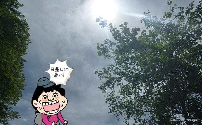 晴天で暑い