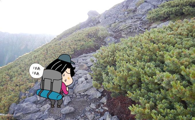 祖父岳山頂への登り