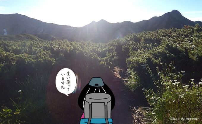 祖父岳山頂から岩苔乗越への下り道2