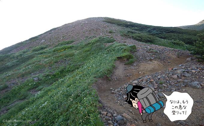 岩苔乗越からワリモ分岐への登り