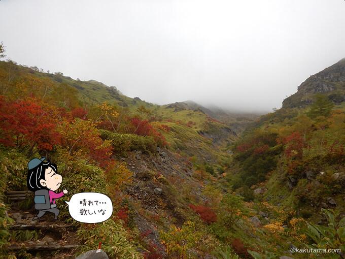 天気が良かったら紅葉はもっと綺麗
