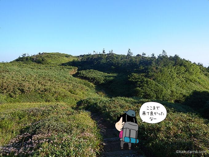 なだらかな湿地帯の栂海新道