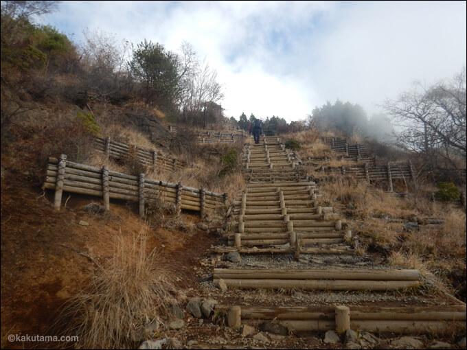 大倉尾根で一番きつい階段