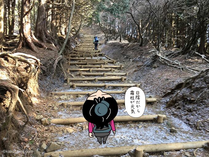 木の階段が広がる