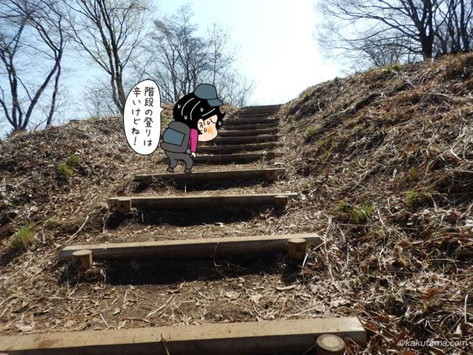 景信山への階段を登る