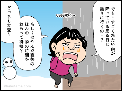 雨氷に関する4コマ漫画_3
