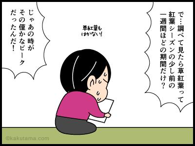 登山用語草紅葉にまつわる4コマ漫画4