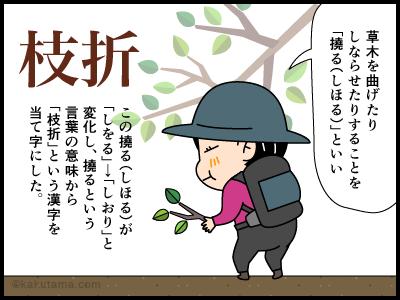 「枝折り」に関する4コマ漫画3