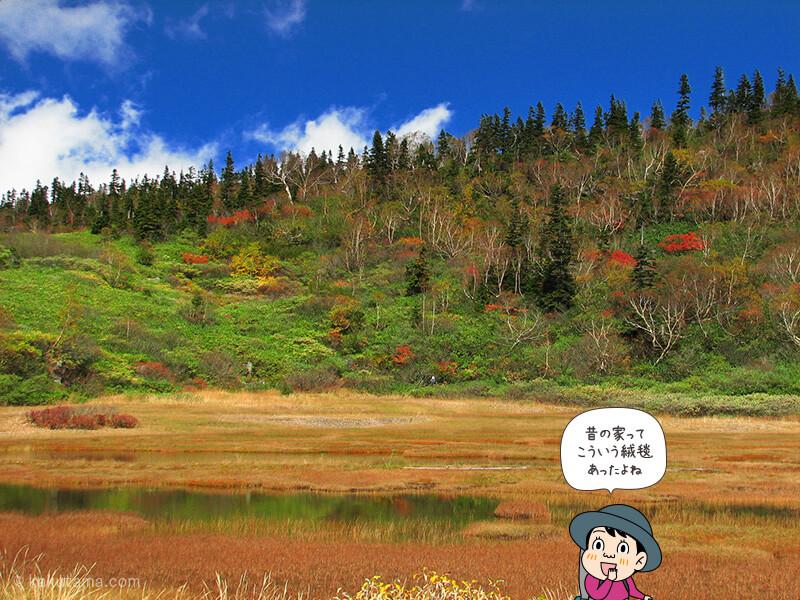 登山用語草紅葉