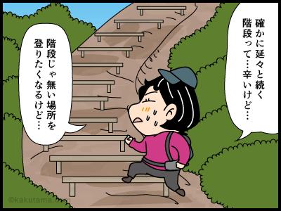 ローインパクトに関する4コマ漫画2