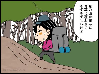 山滴る状態の山を登る4コマ漫画