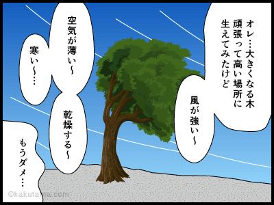 登山用語森林限界に関する四コマ漫画2