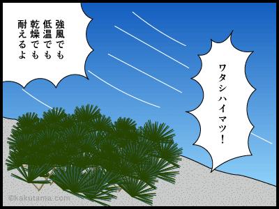 登山用語森林限界に関する四コマ漫画3