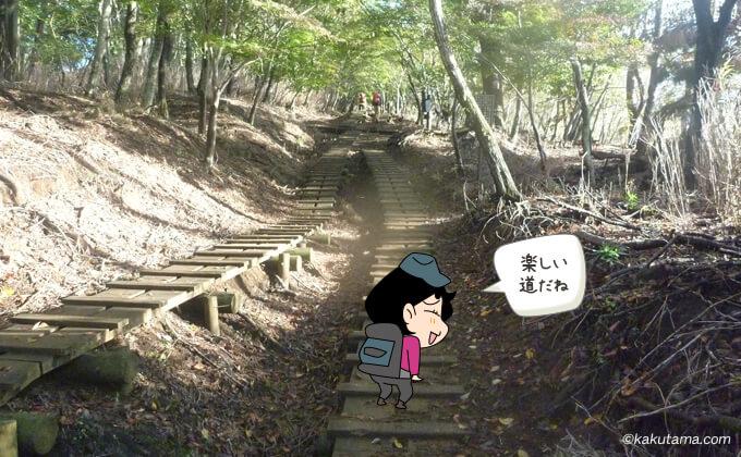 なだらかな大倉尾根登山道