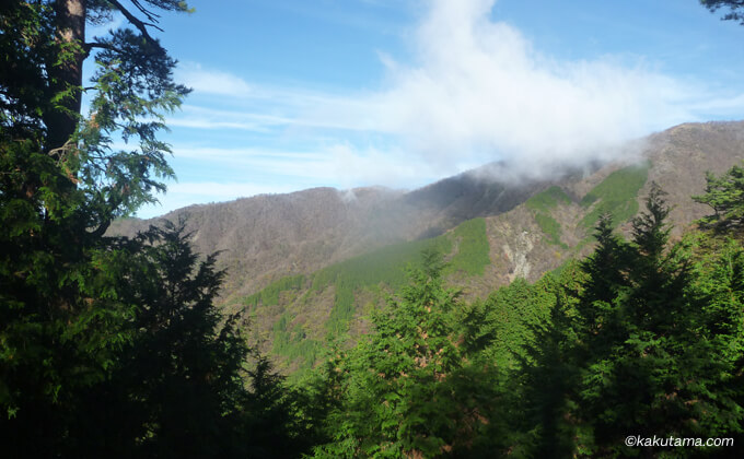 大倉尾根の合間から見える山々