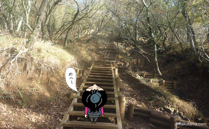 大倉尾根まだまだ続く階段