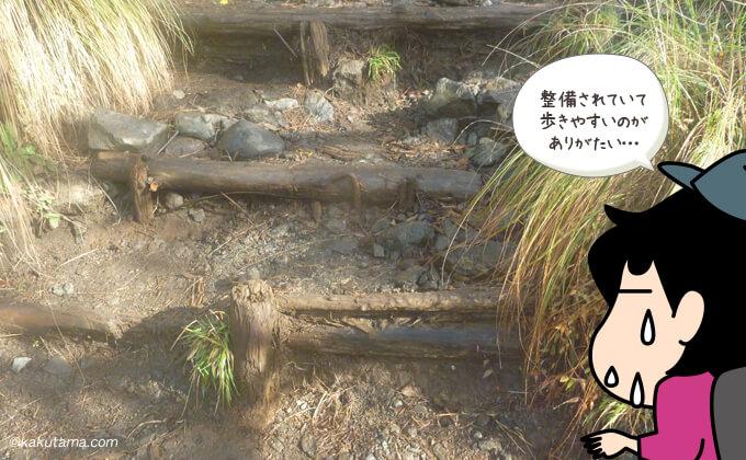 大倉尾根の整備された階段
