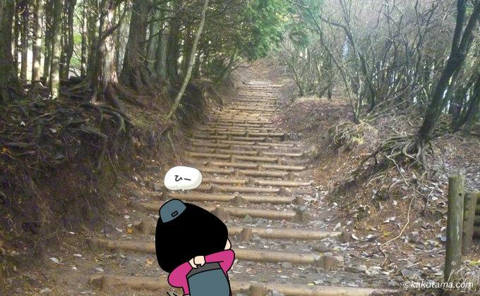 大倉尾根の延々と続く階段