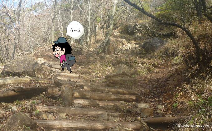 大倉尾根の階段も辛くなってきた