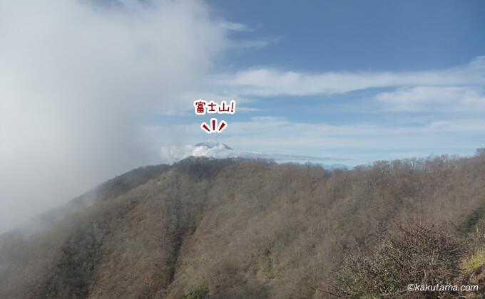 大倉尾根から見える富士山