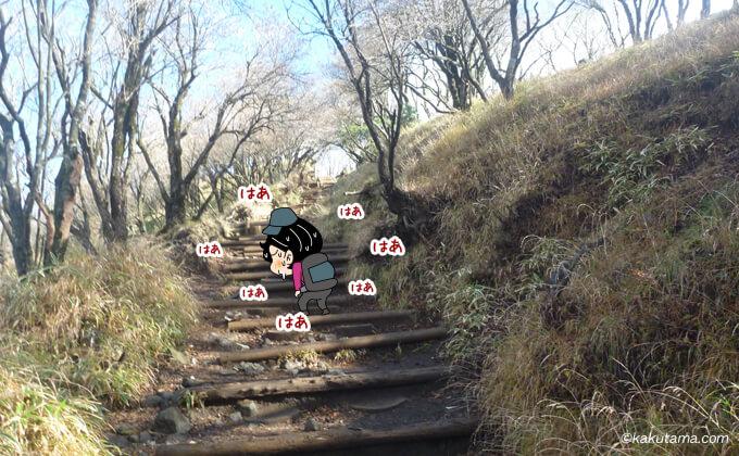 塔ノ岳山頂の最後の階段