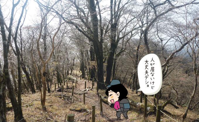 延々と続く木の階段