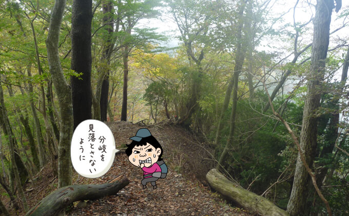 鍋割山の登山道2