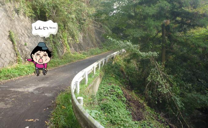 道路を歩く