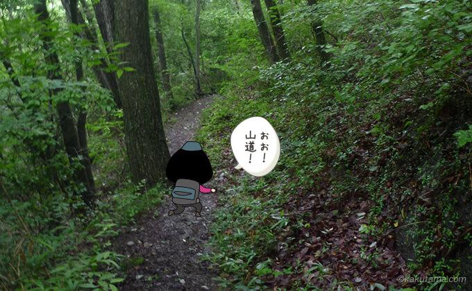 兜岩方面へ続く登山道