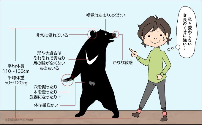ツキノワグマの身長体重視力等に関するイラスト