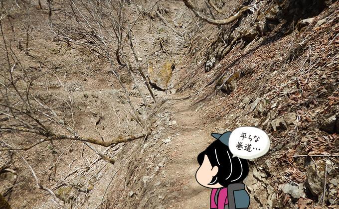 ブナ坂への巻道を歩く1