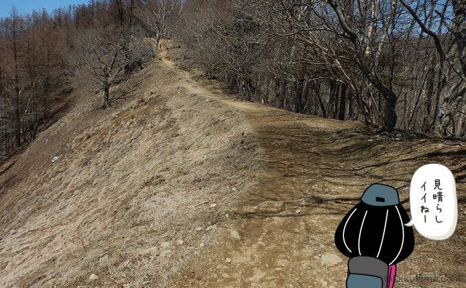 ブナ坂の登り2