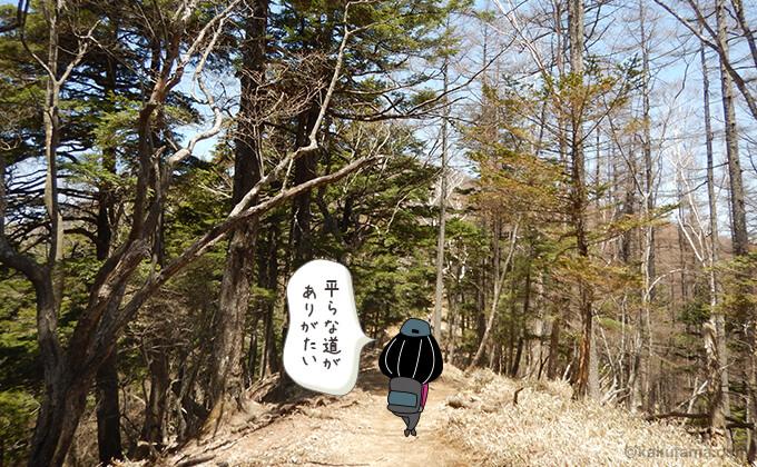 林道に変わる