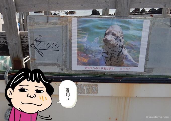 仙法志御崎公園のアザラシの餌