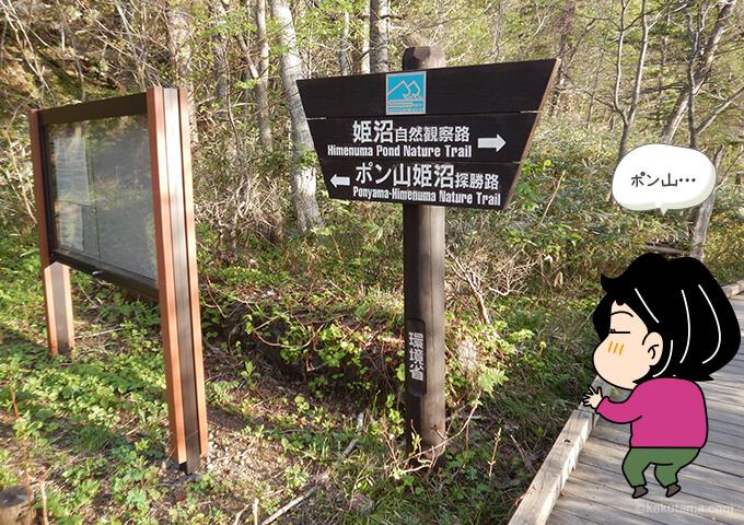 利尻島姫沼の遊歩道