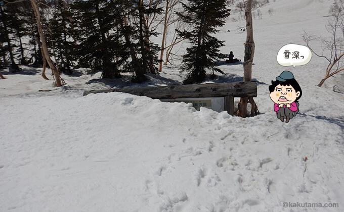 自然園の看板も雪に埋もれている