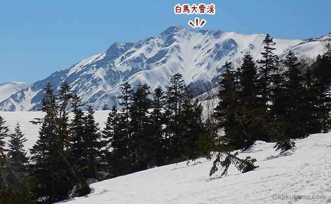 遠くに見える白馬大雪渓