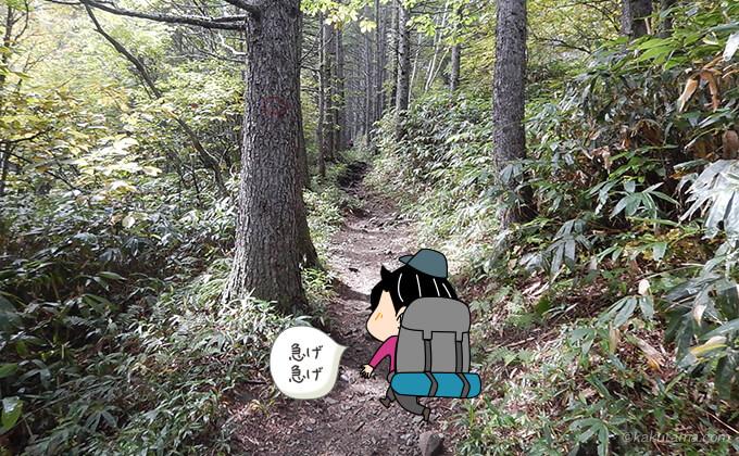 三股登山道2