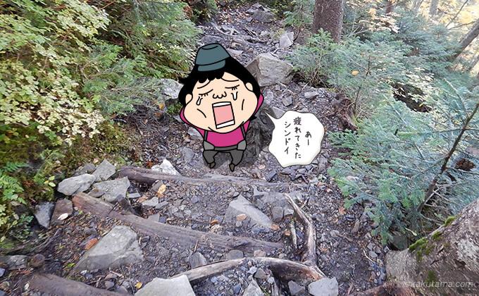 三股登山道登りが辛い