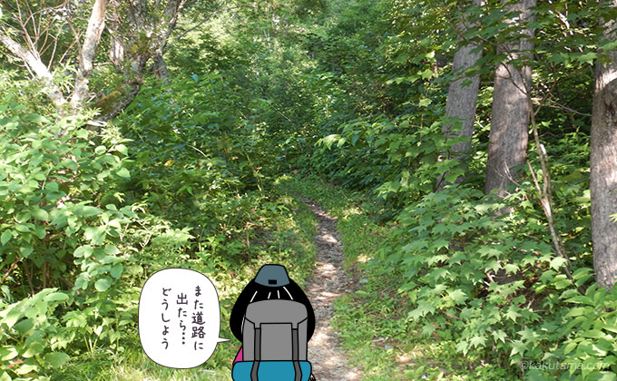 針ノ木自然遊歩道を進む
