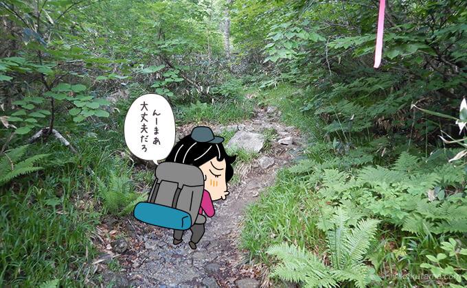 大沢小屋からの登山道