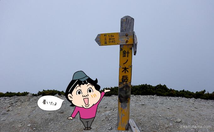 針ノ木岳山頂に着いた