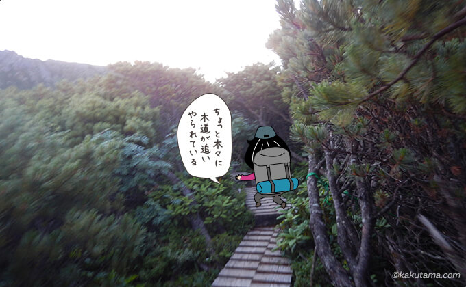 祖父岳までの木道2